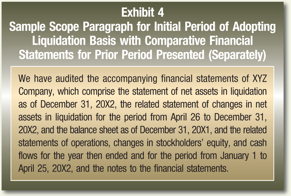 We have audited the accompanying financial statements of XYZ Company, which comprise the statement of net assets in liquidation as of December 31, 20X2, the related statement of changes in net assets in liquidation for the period from April 26 to December 31, 20X2, and the balance sheet as of December 31, 20X1, and the related statements of operations, changes in stockholders' equity, and cash flows for the year then ended and for the period from January 1 to April 25, 20X2, and the notes to the financial statements.