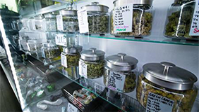 cannabis-dispensary_artcile4